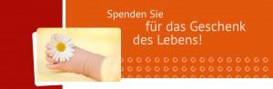 donum vitae Emsland Headergrafik Spenden